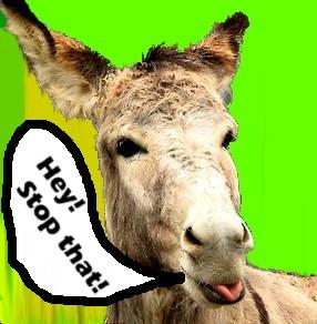 talking-donkey